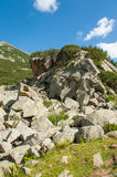 Mountain Pirin Landscape Royalty Free Stock Images