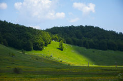 Mountain plain. Mountain image taken in Bosnia Royalty Free Stock Images