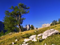 Mountain plateau Stock Photo