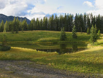 Mountain Pond. Pond in the Canadian Rockies Stock Photos