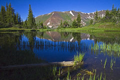 Mountain Pond at Paradise Divide near Crested Butte, Co Royalty Free Stock Image
