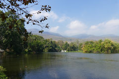 Mountain and the pond in the park Stock Image
