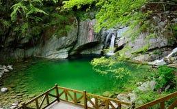 The mountain pool Stock Image