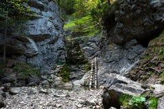 Mountain, pure nature, West Tatras, Slovakia stock image