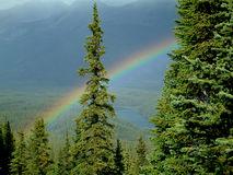 Mountain rainbow. Rainbow in Jasper National Park, Canada Royalty Free Stock Photos