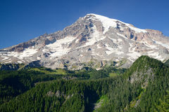Mountain rainier Royalty Free Stock Photos