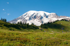 Mountain Rainier, Paradise Valley, Skyline Trail, in August Stock Photo