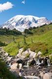Mountain Rainier, Paradise Valley, Skyline Trail royalty free stock image