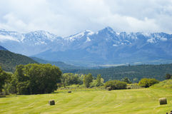 Mountain Ranch. Green field with round hay bales and the San Juan Mountain range in the background Royalty Free Stock Photo