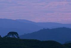 Mountain range. A photo ofmountain range early in the morning royalty free stock photos