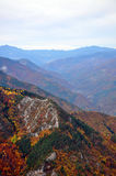 Mountain range. With autumn trees royalty free stock photos