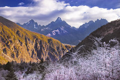 Mountain range. The impressive-looking mountain range makes the person shock Royalty Free Stock Photo