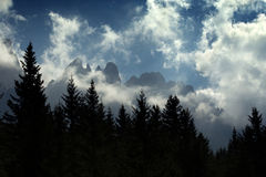 Mountain range and alpine forest Stock Photo