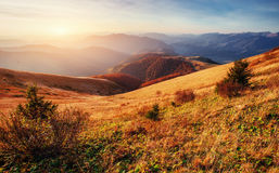 Mountain range in the Carpathian Mountains in the autumn season. Stock Images