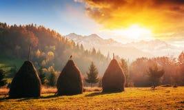 Mountain range in the Carpathian Mountains in the autumn season. Fantastic sunset. Ukraine, Europe.r Royalty Free Stock Photos