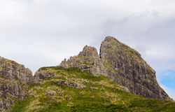 Mountain range in Mauritius with sugar cane field.  royalty free stock photography