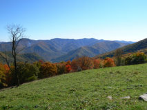 Mountain range in smokey mount. Colorful fall foilage with mountain range and blue skys in the distance Royalty Free Stock Photos