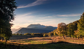 Mountain range with yellow autumn forest in evening light Stock Photography