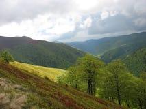 Mountain ranges of the Carpathian Mountains Royalty Free Stock Photos
