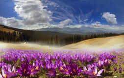 Mountain ranges of Ukraine Stock Image
