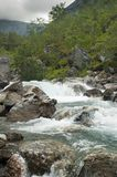 Mountain rapid river in Norway among boulders stock image