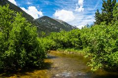 Clean mountain river. The picturesque nature of the Rocky Mountains. Colorado, United States Stock Image