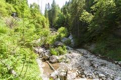 Mountain ravine Royalty Free Stock Image