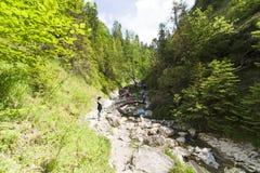 Mountain ravine Royalty Free Stock Images