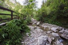 Mountain ravine Royalty Free Stock Photo