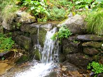 Mountain сreek. A small water stream in the Carpathian mountains in the summer of 2008 Stock Photography