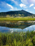 Mountain is reflected in lake with reeds Stock Photography