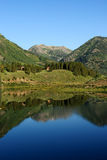 Mountain Reflection. Vertical view of early morning reflection of mountain scene in clear blue alpine lake royalty free stock photography