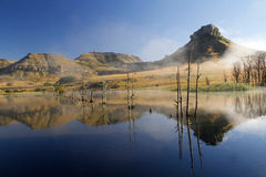Mountain reflection in dam. Vivid mountain reflection in a dam in Fouriesburg, Eastern Free State, South Africa Stock Images