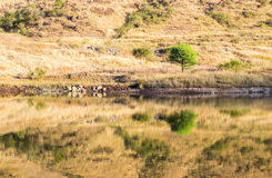 Mountain reflection, isolated lake Stock Photo