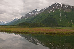 Mountain Reflection on Kenai Marsh Royalty Free Stock Photography