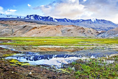 Mountain reflection near Moriri lake Royalty Free Stock Photos