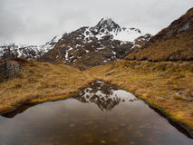 Mountain reflection, Routeburn Track, New Zealand Stock Images