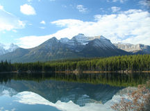 Mountain reflections. Lake HectorColumbia Icefields Parkway,Canadian Rockies,Banff,Jasper,Alberta, Canada Royalty Free Stock Photography