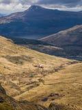 Mountain Rescue , The Cobbler, Scotland. Ben Arthur, The Cobbler, Scotland 29th April 2018. A coastguard helicopter droping off mountain rescue team members to stock photos