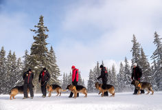 Mountain Rescue Service rescuers with rescue dogs Stock Image