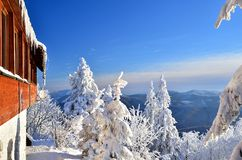 Mountain resort. In sunny winter day royalty free stock images