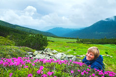 Mountain rhododendron blossoming Stock Images