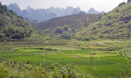 Mountain and rice fields of Yangshuo. Stock Images