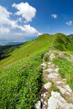 On the mountain-ridge Stock Photo