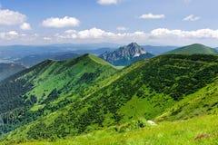 On the mountain-ridge Royalty Free Stock Images