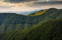 Mountain ridge with forest on hills at sunrise Stock Image