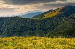 Mountain ridge with forest on hills at sunrise Stock Photo
