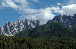 Mountain ridge and forrest in Austria. Mountain ridge and fir forrest in beautiful evening light stock images