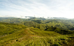 Mountain ridge. With green vegetation Royalty Free Stock Photography