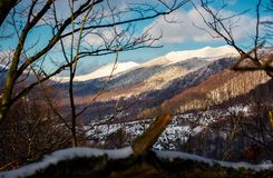 Mountain ridge with high snowy tops. Beautiful Carpathian landscape in winter. view through the branches of trees. lovely nature background Royalty Free Stock Photo